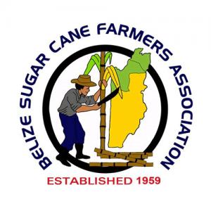 BSCFA-logo