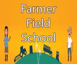 Farmer Field School Manual