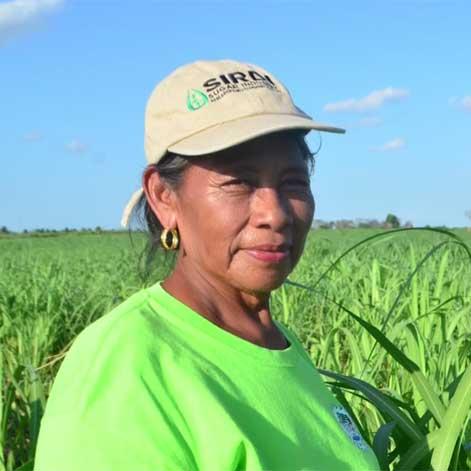 Belize Sugar Cane Farmer