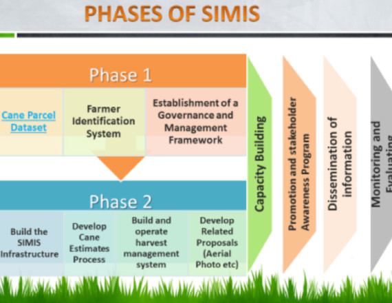 Phases of SIMIS